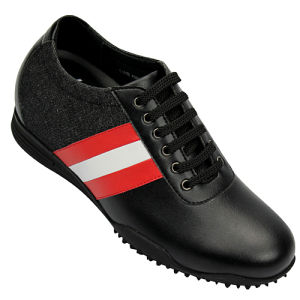 Men Casual Shoes (2K08M01)