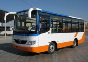 Bus and Bus Chassis (SLG6700T3GF)