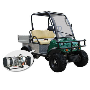Hybrid Generatorn Golf Buggy with Storage & Steel Tube Rolling Bar pictures & photos