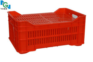 Plastic Crate Mould of Red Crate pictures & photos