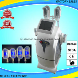 2017 New Body Slimming Cryoliolysis Salon Equipment