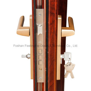Hot Sell Aluminium Thermal Break Hinge Casement Door (FT-D80) pictures & photos