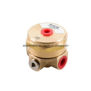 Normally Closed Automatic Air Venting Valve & Bronze Air Release Valve for Air Compressor (LCV)