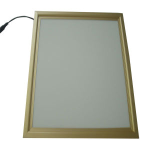 Bi-Colored LED Panel Lights with Remote Controller pictures & photos