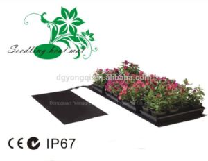 Add-on Seedling Heated Mat for Greenhouse Hydroponics pictures & photos