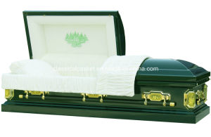 Forest 18 Gauge Steel Hunter Green Casket pictures & photos