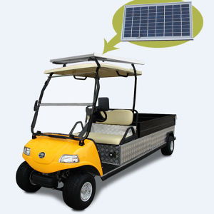 Solar Panel Electric Utility Car 2 Seater Electric Buggy pictures & photos