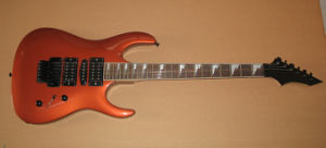 Custom Electric Guitar (FG-01-2)