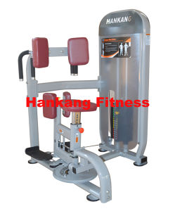 Gym and Gym Equipment, Body Building, Hammer Strength, Rotary Torso (HP-3034) pictures & photos