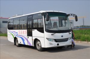 2013 New Design Tourist Bus Ls6760