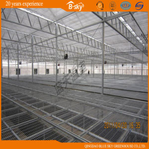China Polycarbonate Material Polycarbonate Sheet PC Used
