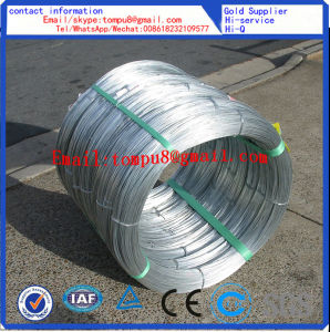 Galvanized Low/High Carbon Steel Wire pictures & photos