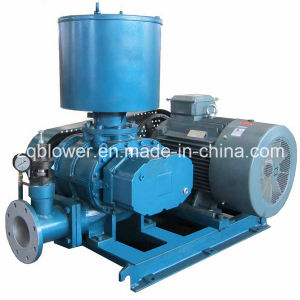 Energy Saving Waste Water Treatment Roots Compressor (ZW-610) pictures & photos