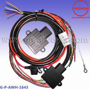 Incredible China 14 Awg Pcba Lighting Lamp Control Trailer Fuse Holder Wire Wiring Digital Resources Skatpmognl