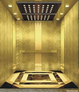 Passenger Elevator with Hairline Stainless Steel Machine Roomless