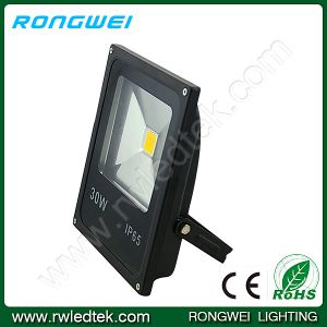 High Lumen IP65 30W Output LED Floodlight with CE RoHS