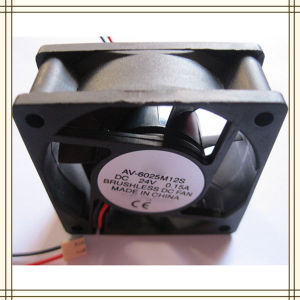 DC 24V Brushless Fan 6025 Supplier in China