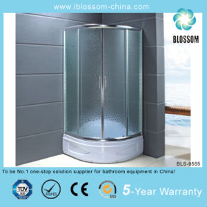 Modern Design Simple Acid Glass Shower Room (BLS-9555) pictures & photos