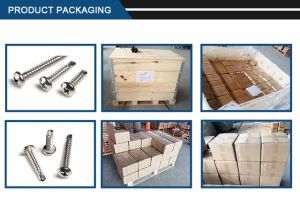 Stainless Steel Cross Recessed Round Self-Drilling Tapping Screw pictures & photos
