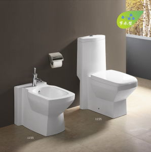 Siphonic Water Saving Toilet CE-T210 pictures & photos