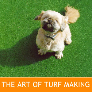 Pets Like Our Artificial Grass