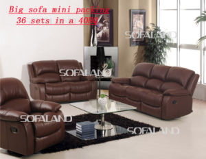 Promotion Leather Modern Recliner Sofa (C853#)