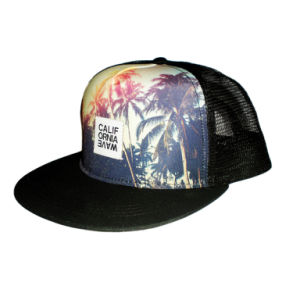 Leisure Printing Black and White Flat Brim Trucker Cap (JRT105) pictures & photos
