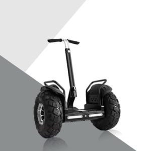Two Wheels Golf Car 19 Inches Standing Self Balancing Electric Scooter