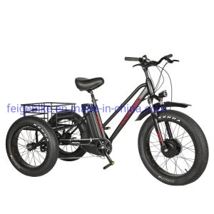 "Strong Durable Throttle Type 24""*4.0 Electric Fat Trike (FP-ETRK1804)"