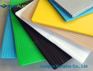 2mm to 12mm Polypropylene Hollow Sheets/PP Hollow Sheet pictures & photos