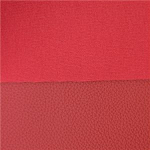 Anti Mildew High Quality PVC Leather for Frunitrue (DS-924) pictures & photos