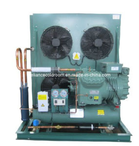 Air Cooled Bitzer Condensing Unit for Cold Room pictures & photos