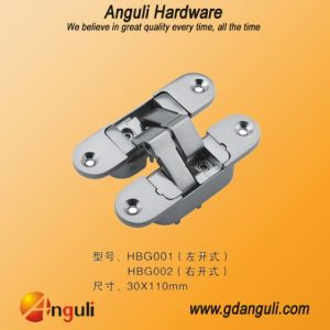 3D Adjustable Invisible Hinge (30*110mm) pictures & photos