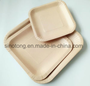Disposable Beverage Square Plate Dishes Paper Plates & China Disposable Beverage Square Plate Dishes Paper Plates - China ...