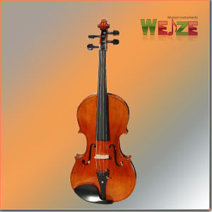 Handmade Natural Flame Viola pictures & photos