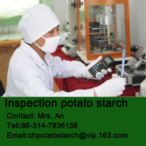 Native Potato Starch Supply Factory
