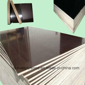 China Film Faced Birch Plywood Film Faced Birch Plywood