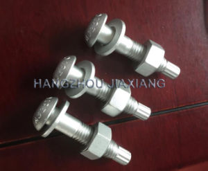 Round Head Tension Control Bolt A325 pictures & photos