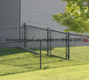 Hot DIP Galvanized Chain Link Fence / PVC Coated Chain Link Fence