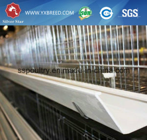 Big Capacity a Type Chicken Battery Cage Selling From China pictures & photos