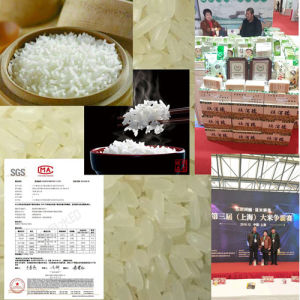 China Rice, Rice Manufacturers, Suppliers, Price | Made-in
