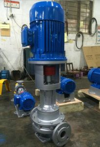 Vertical Hot Oil Pump for 350 Degree Hot Oil (New Type) pictures & photos