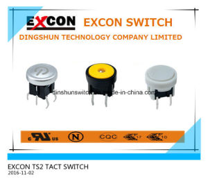 Tact Switch Ts2 Series with Light and Water-Proof Switch
