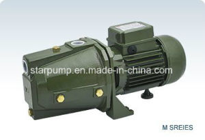 Ce Certificated Popular in Europe Market Garden Keeping Self Priming Water Pump