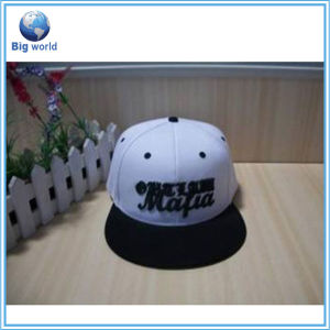 Wholesale Baseball Hat with Low Price Bqm-030