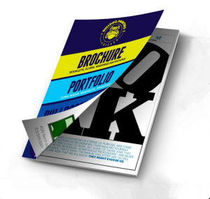 Busniess Booklets Printing Service (jhy-163)