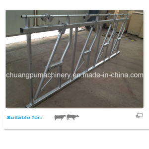 Headlock Equipment Steel Farm Fence Panel for Cow Farm pictures & photos