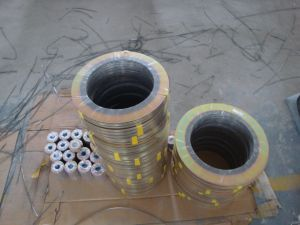Hot Sale Products Spiral Wound Gasket pictures & photos