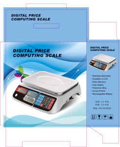 Electronic Price Computing Scale (DH-605) pictures & photos
