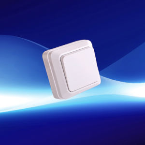European Surface Wall Switch (YW-1802)